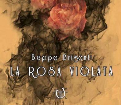 la rosa violata